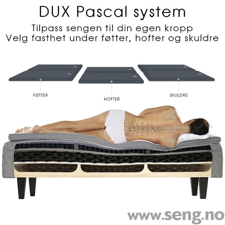 DUX Pascal