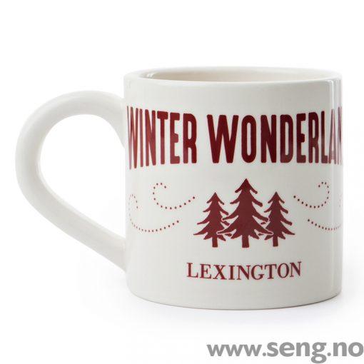 Lexington kopp vinter 2017