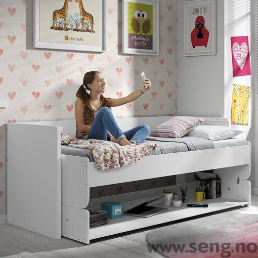 Kombinert seng og skrivebord.