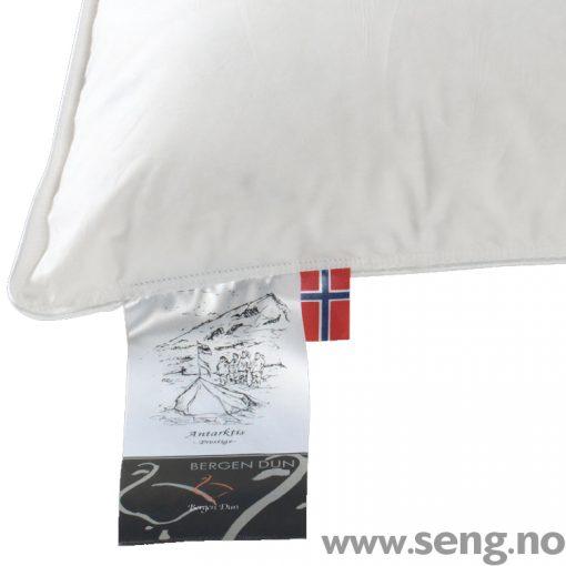 Bergen Dun Pute Antarktis